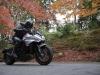 Suzuki Katana - nuove foto