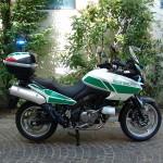 Suzuki V-Strom Polizia Locale (2)