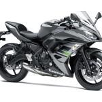 Kawasaki-ninja-650-grigia-1