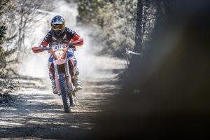 KTM e Pirelli: competizione e crescita